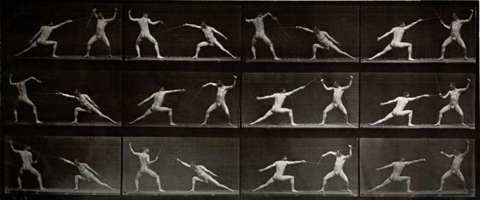 muybridge-fencing